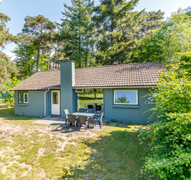 8 persoons bungalow Veluwe