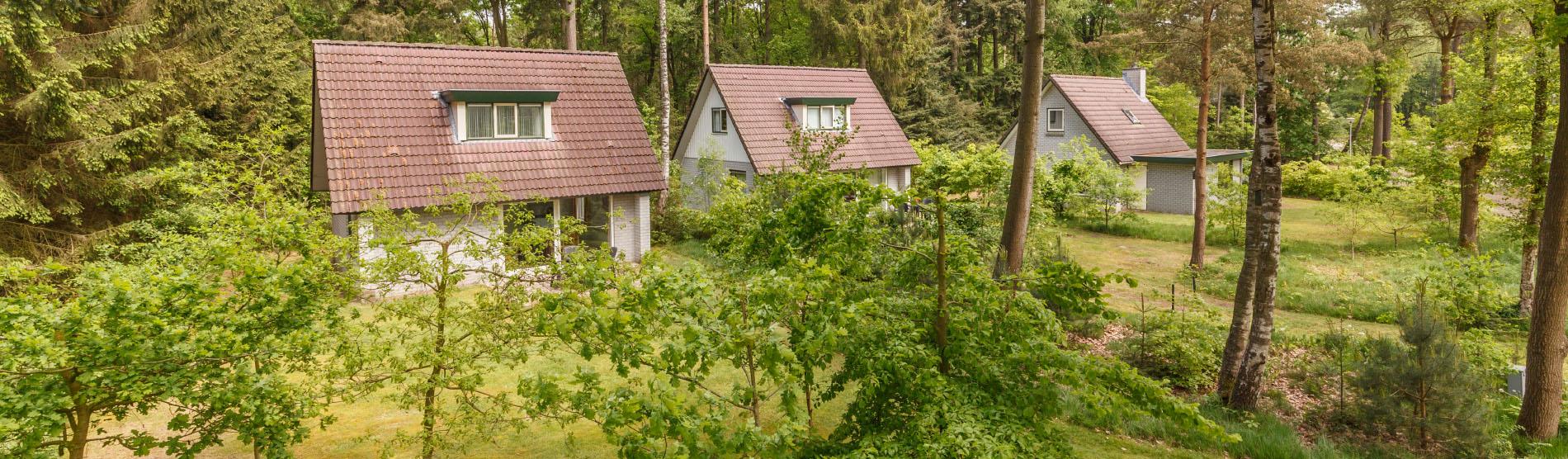bungalows_veluwe